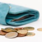 Betalningsplan plånbok
